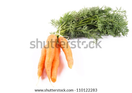 Few carrots isolated on white - stock photo