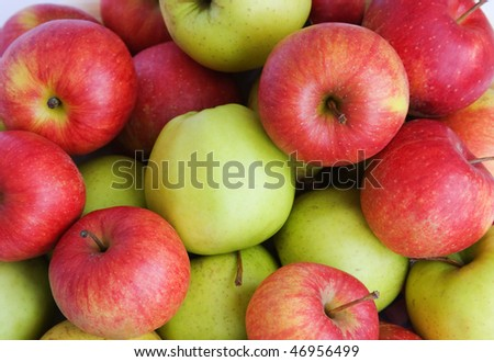 few red and green apples - stock photo
