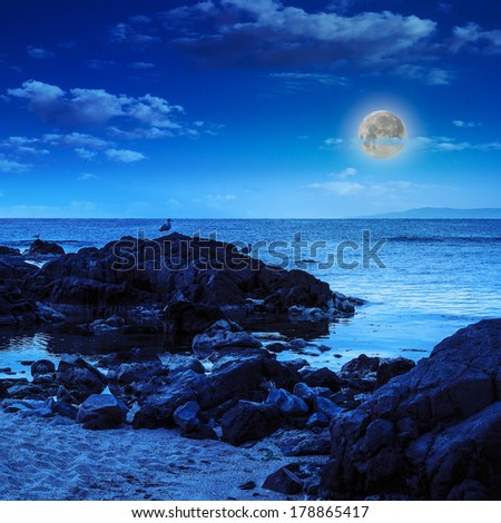 few seagulls sit on big  boulders on sandy beach near the sea watching waves at night in moon light - stock photo