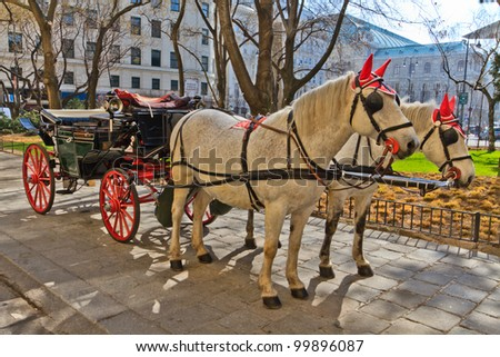 Fiaker horse carriage in Vienna, Austria (no people) - stock photo