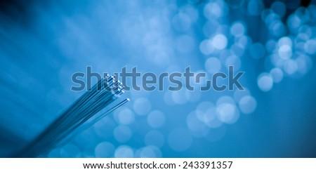 fiber optic filaments on bright blue defocused background - stock photo