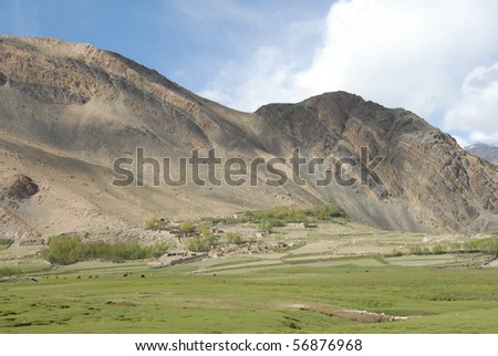 field being farmed in the bottom of a valley in the hindu kush - stock photo