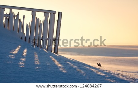 field covered with snow - stock photo