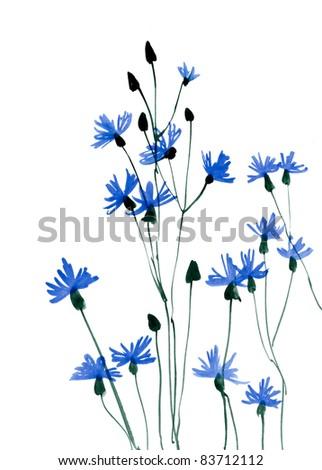 Field flowers 1 - stock photo