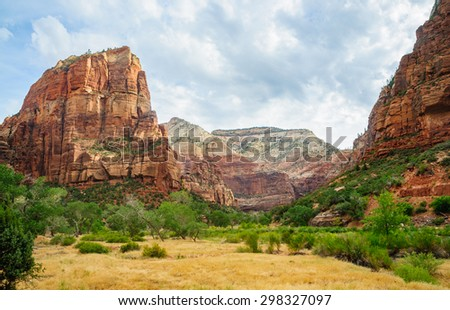Field in Valley of Zion National Park - stock photo