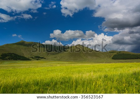 Field landscape with dramatic sky - stock photo