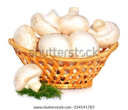 field mushrooms in the basket with green dill isolated on white - stock photo