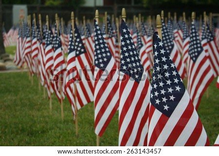 Field of American flags. - stock photo