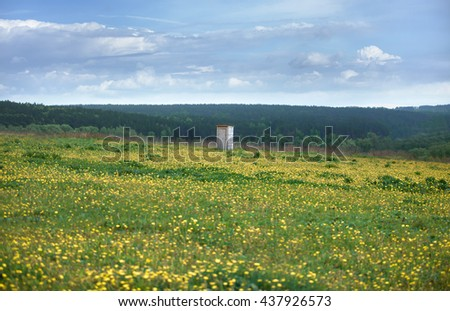 field of flowers, the horizon of trees and blue sky with clouds and a wooden toilet. peace and quiet - stock photo