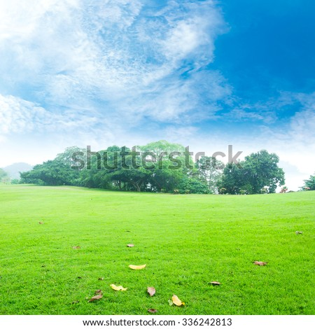 Field of grass and beautiful sky. International Mountain Day. World Environment concept. - stock photo