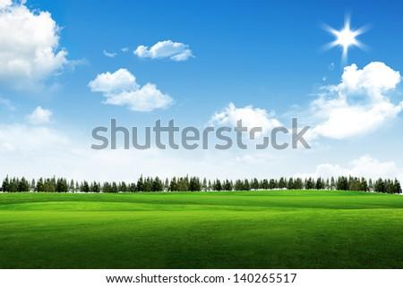 Field of grass, tree, sun and blue sky - stock photo