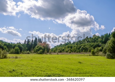 field of grass with woods and perfect blue sky with clouds - stock photo