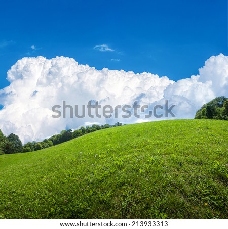 field of green grass and perfect clouds in blue sky - stock photo