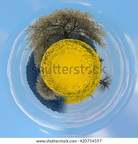 Field of spring flowers dandelions, Yellow dandelion with shallow focus in backgound flowering tree. Beautiful countryside. Beautiful Little planet ecology concept. Tiny green planet - stock photo