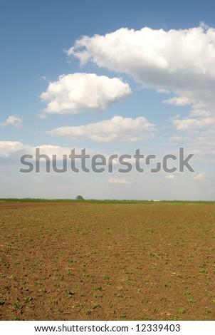 Field over blue sky and clouds in spring - stock photo