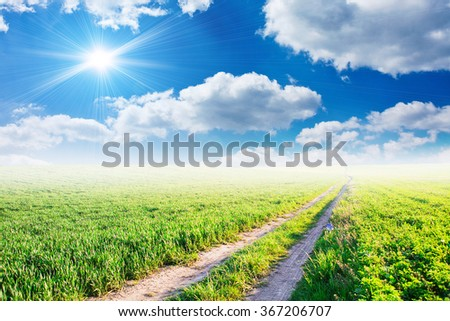 Field under blue clouds sky. Beauty nature background - stock photo