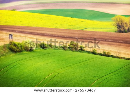 Field waves with trees in the spring, South Moravia, Czech Republic - stock photo