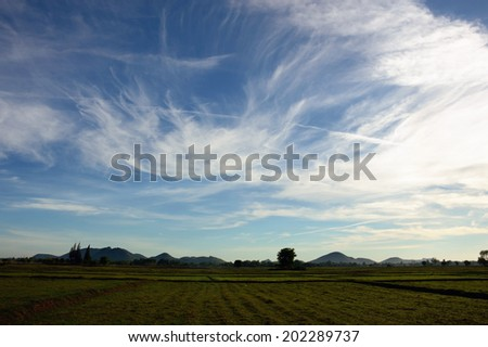 field with blue sky and cloud, landscape of rural scene - stock photo