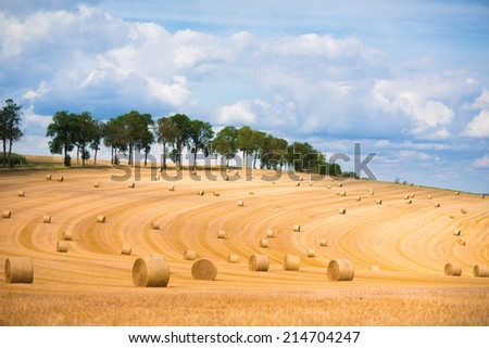 Field with golden hay bales during autumn harvest time in France, Europe - stock photo