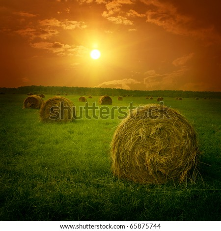 Field with hay bales at twilight. - stock photo