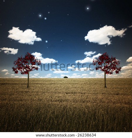 Field with two trees - stock photo