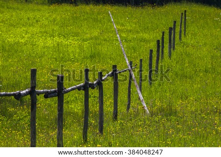 field with wooden fence - stock photo