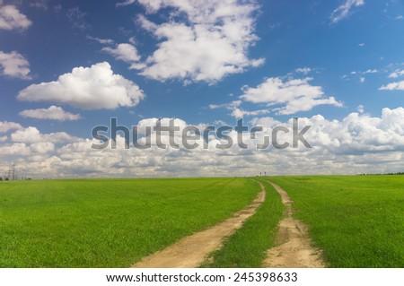 Fields of Sunlight Vibrant Colors  - stock photo