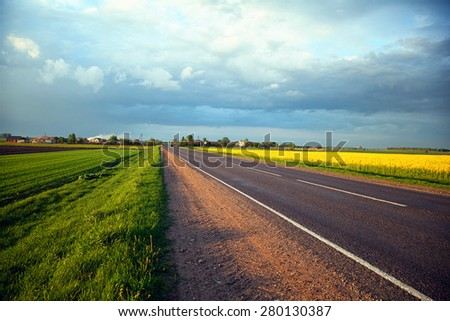 Fields with flowering buckwheat along the motorway - stock photo