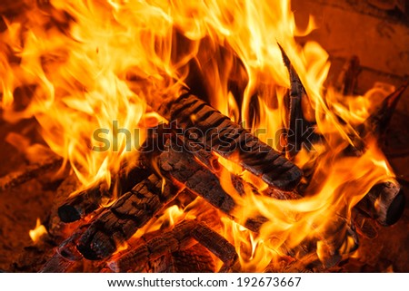 Fiery flame from burning wood in a fireplace - stock photo