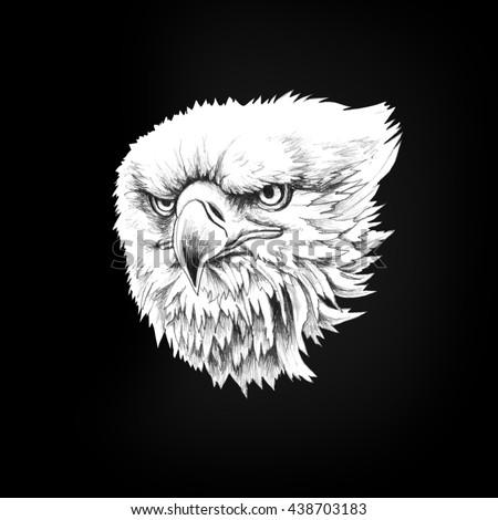 Figure head bald eagle isolate on a black background. Pencil illustration. - stock photo