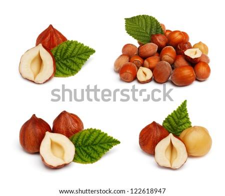 Filbert nut set isolated on white background - stock photo