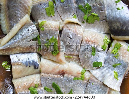Fillet of a marinated light-salted herring with greens - stock photo
