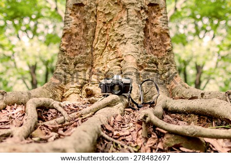 Film camera under a big tree in natural outdoor, vintage look - stock photo