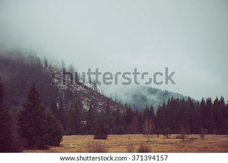 Filtered and toned vintage landscape of foggy forest and mountains - stock photo