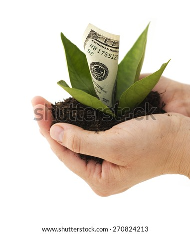 Financial Growth - stock photo