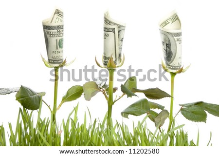 Financial growth.Conceptual image. - stock photo