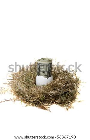 "Financial Nest Egg concept $100.00 (one hundred dollar bills) rolled up inside a bird egg inside a bird nest ""isolated on white"" - stock photo"
