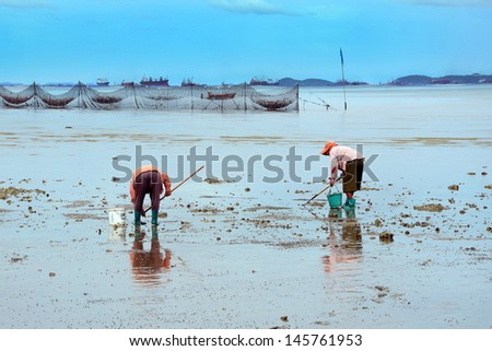 Finding shells in the sand. The livelihoods of coastal residents. - stock photo