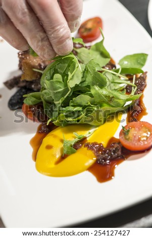 Fine Dining - Meats - Grilled Sirloin Steak With Rocket Salad / Meats - Grilled Sirloin Steak - stock photo
