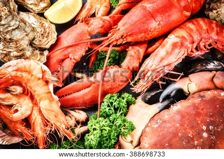Fine selection of crustacean for dinner. Lobster, crab and jumbo shrimps and oysters on dark background - stock photo