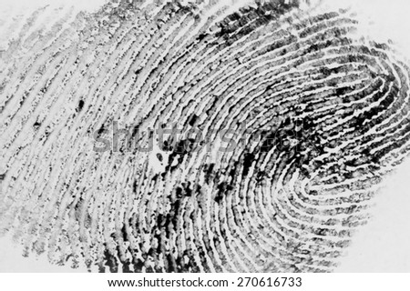 fingerprint abstract - stock photo