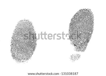 Fingerprint on white background. - stock photo