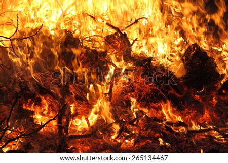 fire and coals close-up - stock photo