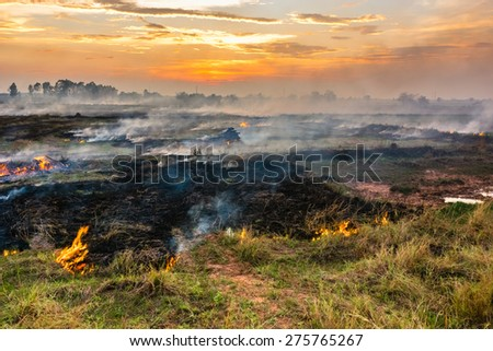 Fire and smoke in the field cause by human to prepare soil for coming cultivation - stock photo