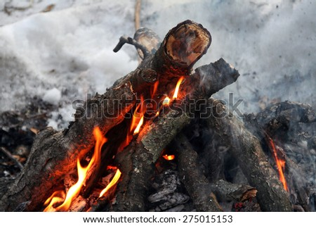 Fire, burning branches in nature. The fire on the wood. Tongues of flame. Trek travel in the winter. The fire on the snow. - stock photo
