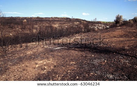 Fire damage: Barren land after forest fire in Southern France. - stock photo