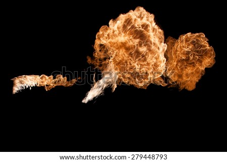 Fire flame isolated on a black background, nobody. - stock photo