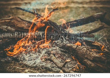 Fire Flame wooden camp burning Outdoor travel vacations concept moody background  - stock photo
