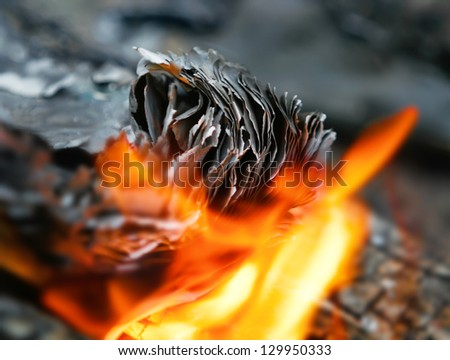 fire in the fire burns out of paper, burn the pages of a book on the coals with flying sparks 	 - stock photo