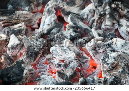 Fire on charcoal for food grilling in an oven. - stock photo